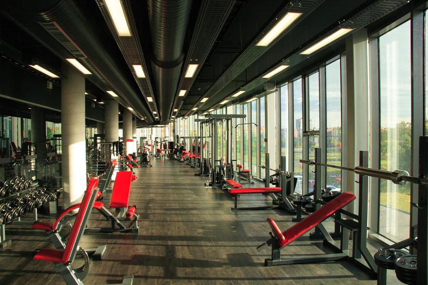 arena-gym