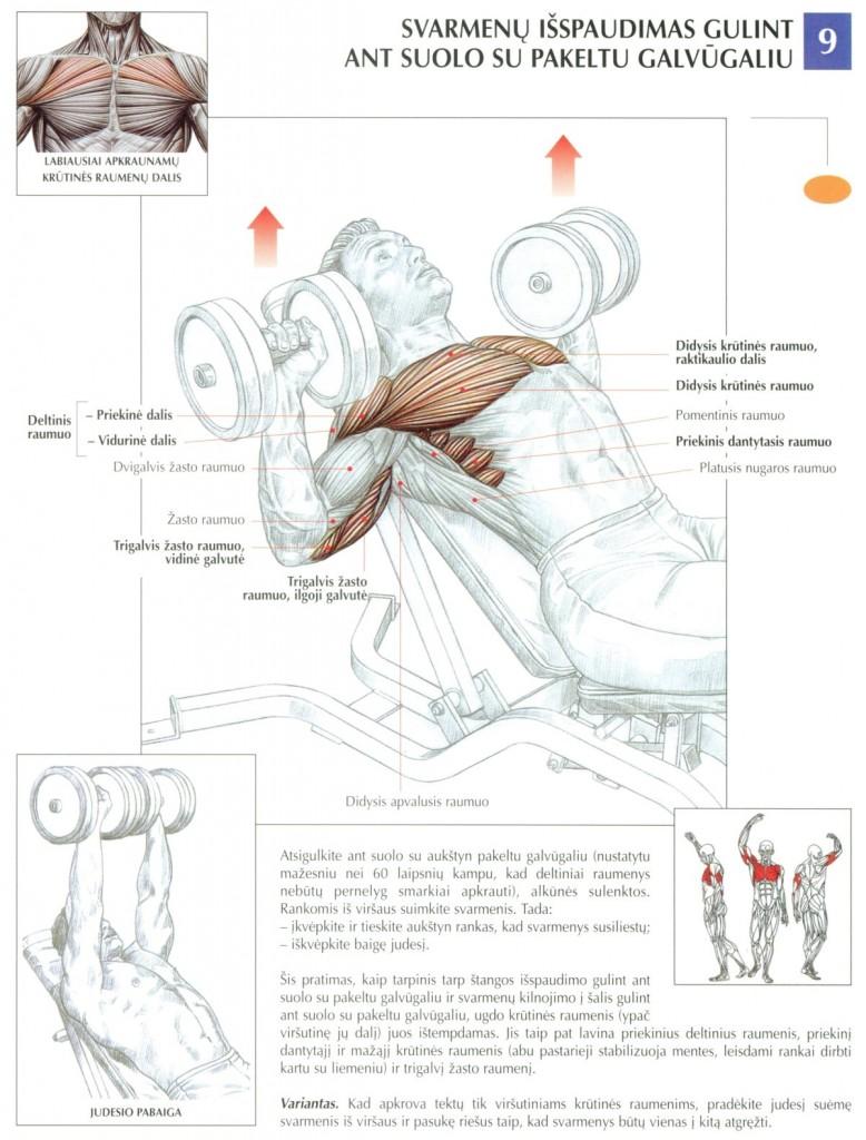 svoriu-spaudimas-kampu-krutinei