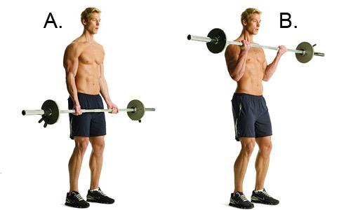 Bicepsas su štanga stovint